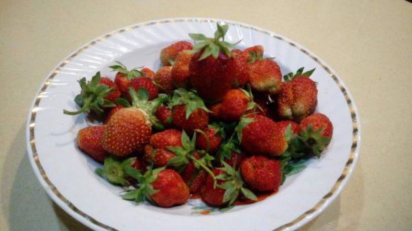 ягоды клубники